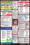 Wisconsin Labor law compliance Poster